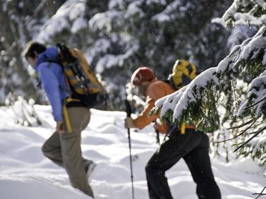 Winterwandern Fotolia 10802234 XS 4 3