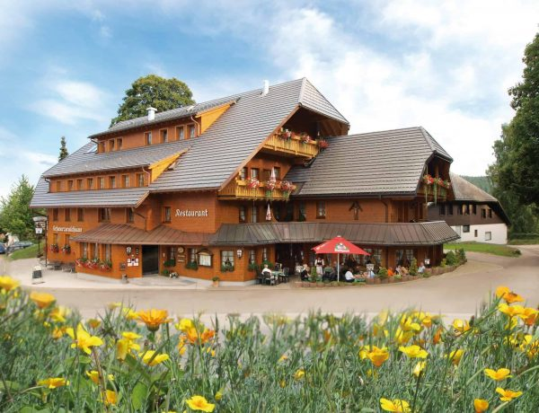 Schwarzwaldhaus fertig 1 scaled